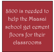 $800 is needed to help the Maasai school get cement floors for their classrooms